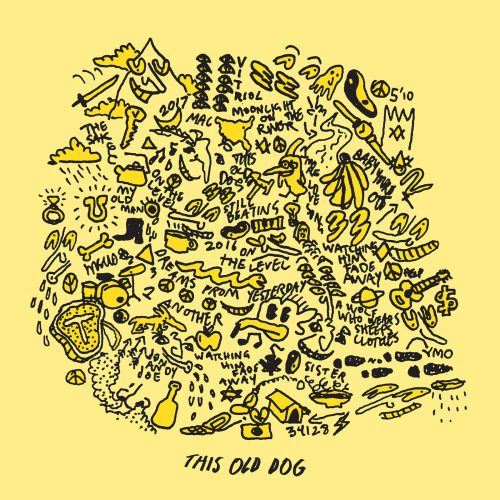 Mac DeMarco This Old Dog album cover