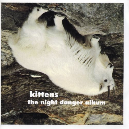 kittens the night danger album