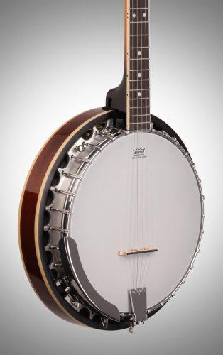 Best Banjo for Folk Music