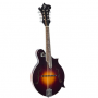 Loar LM-520-VS Performer F-Style Mandolin Review