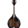 Ibanez M510DVS Mandolin Review