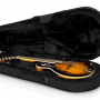 Gator Cases Lightweight Polyfoam Mandolin Case Review