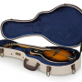 Gator Journeyman Series Deluxe Wood GW-JW Mandolin Case Review