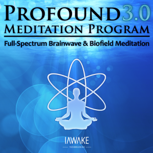 Profound Meditation Program